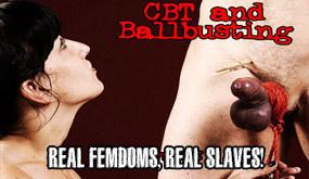 cbtandballbusting.com